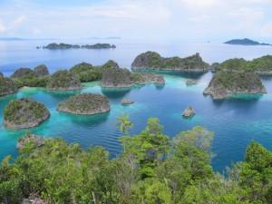 fam-island