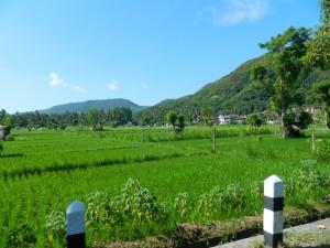 route-bali2