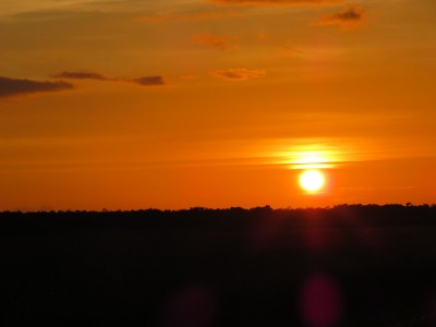 sunset-everglades